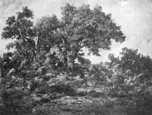 FIG. 65.—ROUSSEAU, CHARCOAL BURNERS' HUT. FULLER COLLECTION.